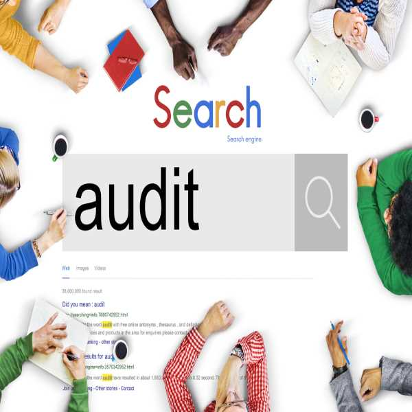 how seo audit helps