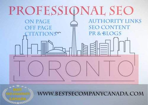 professional seo in toronto