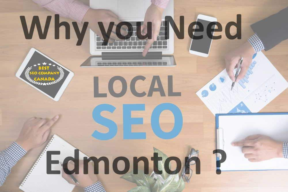 why you need seo services in edmonton