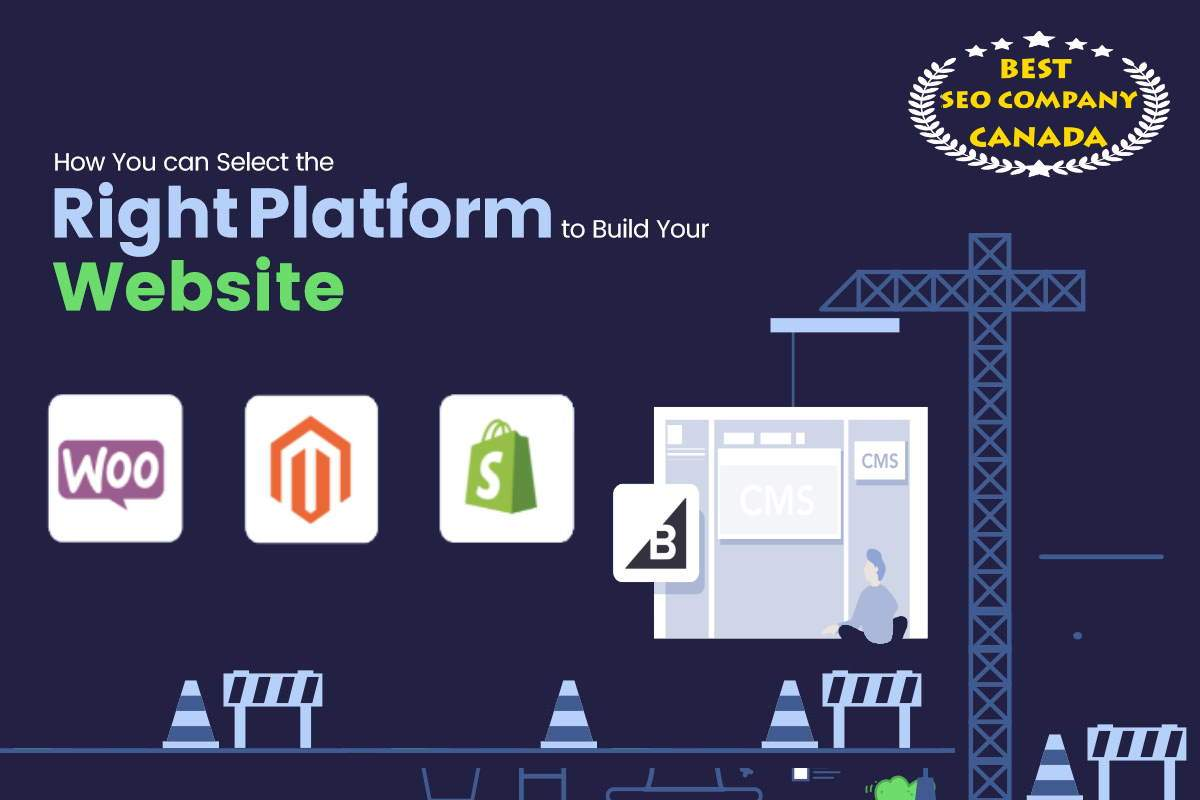 how to choose perfect website development platform
